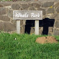 Whale Park in Yachats