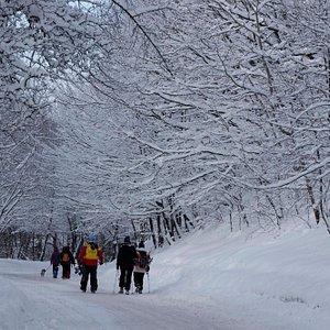 Skiing in Vitosha