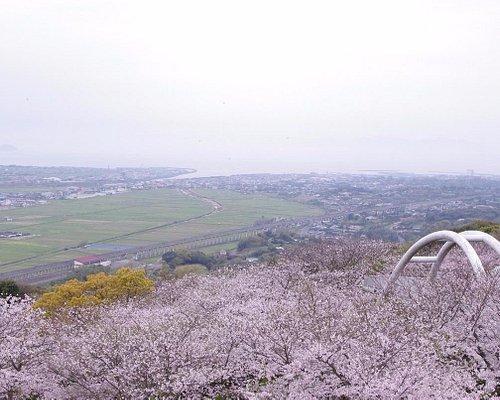 東光山(桜開花時期)