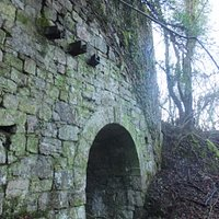 forgotten kilns in the undergrowth