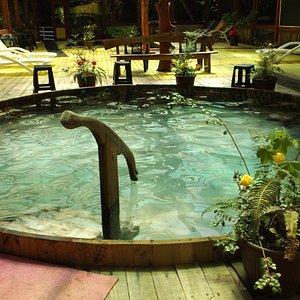 piscina 37 grados interna