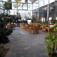 Dans un cadre luxuriant de végétation