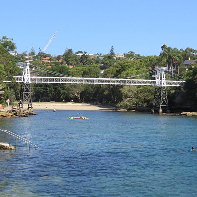 Suspension Bridge - Parsley Bay Reserve