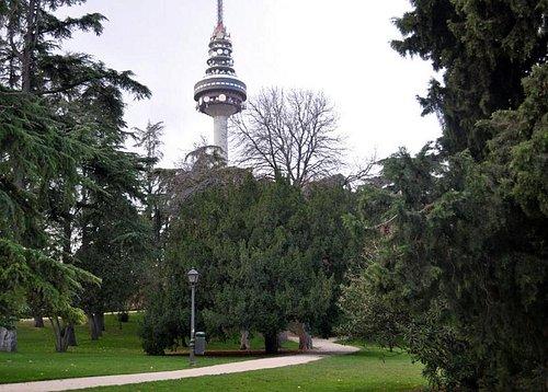 un tranquilo paseo en la naturaleza en pleno Madrid