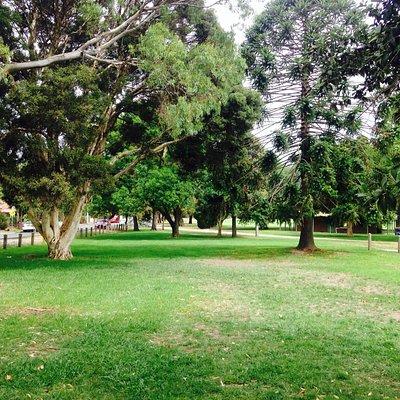 Alphington park