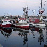 både ved Snogebæk havn