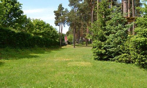 Teren leśny należący do hotelu
