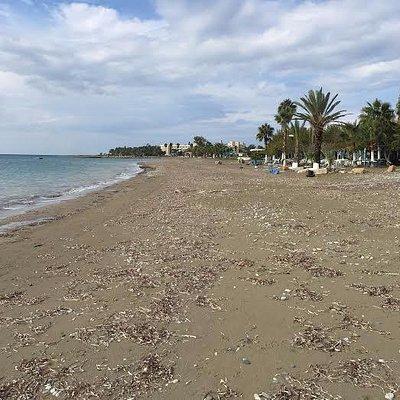 beach in December 2015