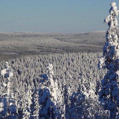 View from the top the Mount Rita (Vitavalkea Ski resort in Pello in Finnish Lapland)