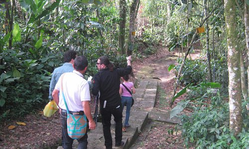 Sendero del Jardin Botanico de la UTP