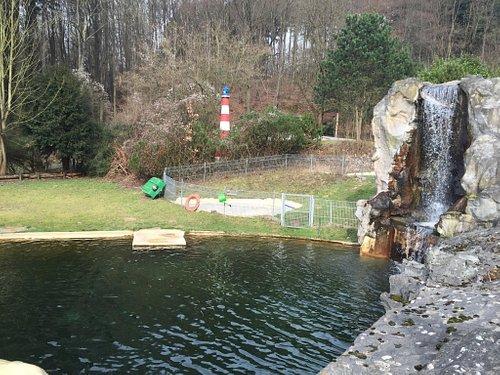 Wasserfall bei den Seehunden