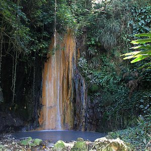 The Waterfall within the gardens - showing significant mineral deposits