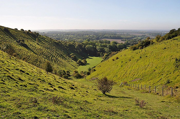 Wye downs is a very special place to visit, explore and enjoy.