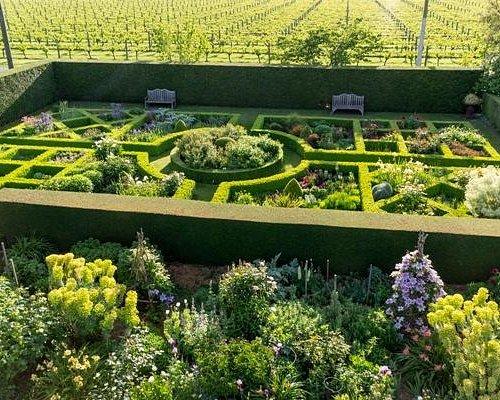 Upton Oaks Gardens - Knot Garden
