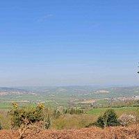 Trinity Hill Scrub land
