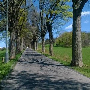 Okolí Lázní Libverda zve na procházky
