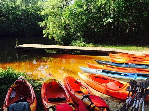 Kayak Tours Southport - Oak Island