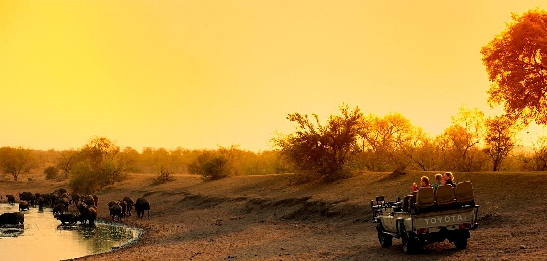 Tintswalo Safari Lodge Game Drive Vehicle on the Manyeleti Game Reserve