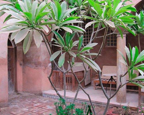 Inner courtyard near apartments
