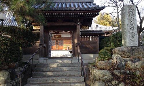 正面入口。山門の左に樹齢500年と言われる松が生える。