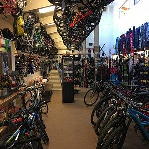 Bicycle Department Showroom