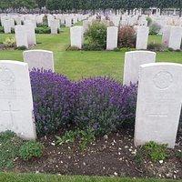 Plus de 3000 tombes de soldats anglais: fleuries et soignées comme un jardin