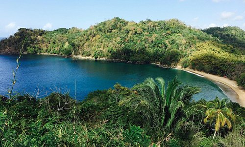 The view of Englishman's Bay on the way from Castara