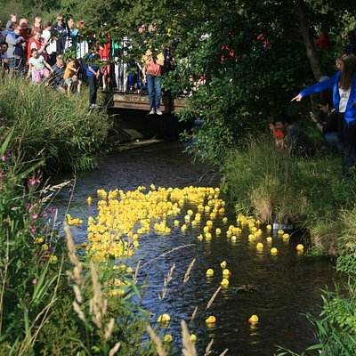 Annual Fun Day and duck race in September