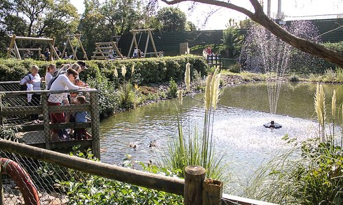 The lake and outdoor Adventure Play Zone
