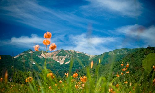 A view of beautiful Norikura from the ski resort