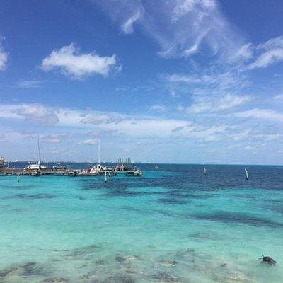 Recife de corais na praia Tortuga, faça snorkel !