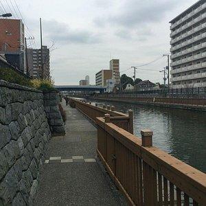 小名木川から見える丸八橋の右の森がそうである