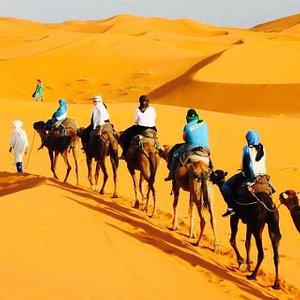 Travel in Morocco / Desert Tours Merzouga /  Best Morocco tours-opérateurs