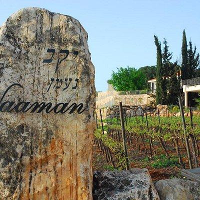 Na'aman Winery enterance