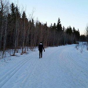 Waskasoo Creek Trail