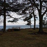 Lake Ontario as seen from Adamson Estate