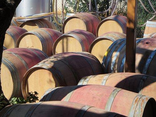 Wine Tour in Israel - Galilee Winery