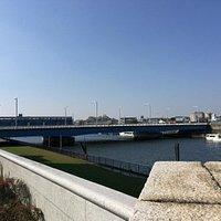 瑞江大橋際から見た新今井橋