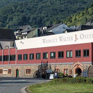 Weingut und Eingang zum Gewölbekeller