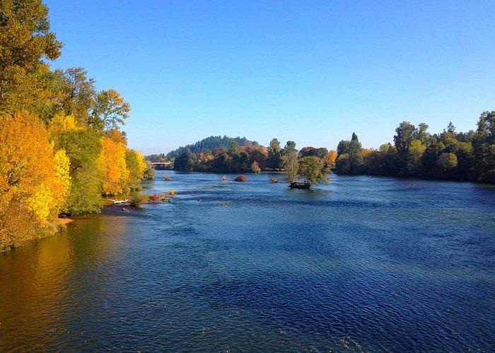 Early fall from Autzen footbridge along the Willamette River bike trail