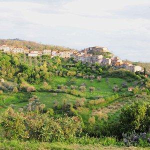 View of Cana, Maremma