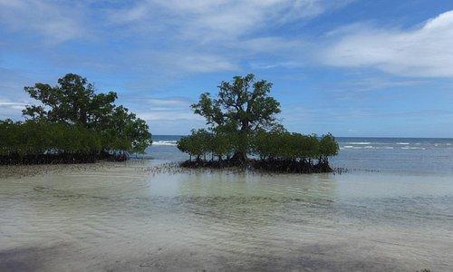 public beach in Maria