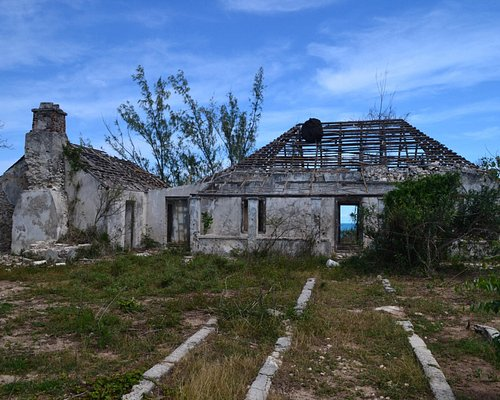 Bowe Family Plantation