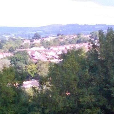 View of Honiton from Roundball Hill