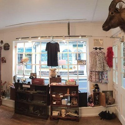 A quick view of the shop