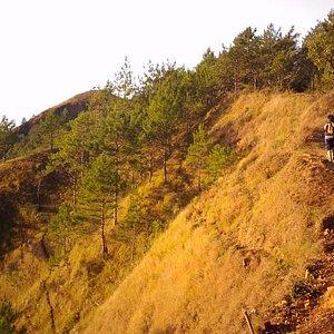 trail to peak one