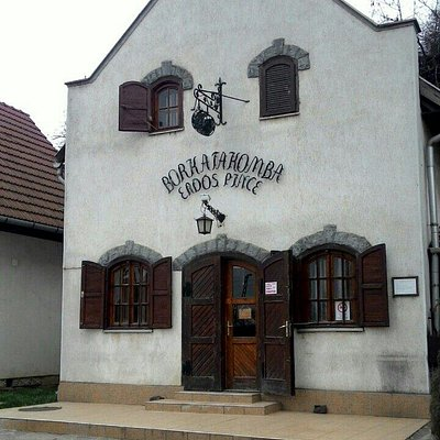Erdős Pince - Borkatakomba