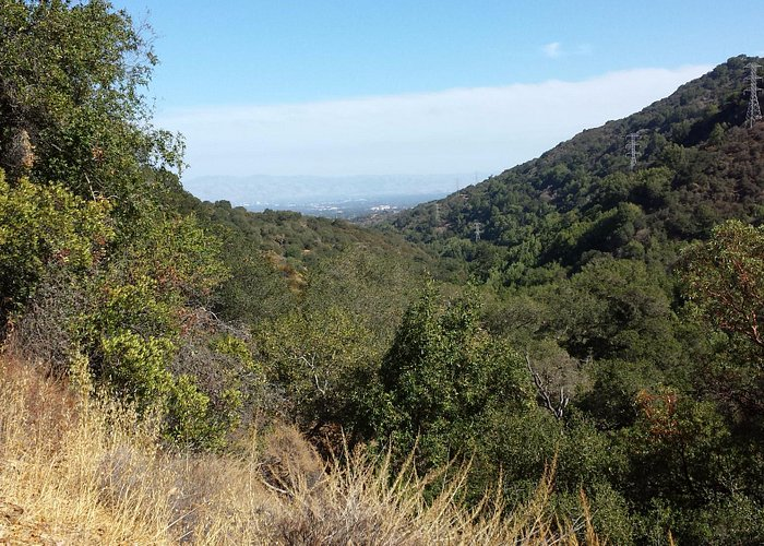 from the top of the hill, upper wildcat canyon