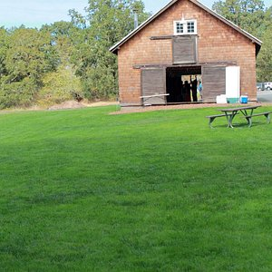 Barn and meadow we rented for our wedding.