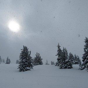 snow - snow - snow, but no snow guns